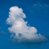 Photo of a cloud